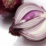 onion-276590_1920